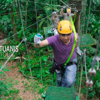 canopy Tortuguero Costa Rica