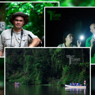 things to do in Tortuguero Costa Rica